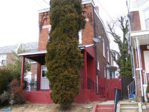 treehouseadjacent  Real Estate Agent
